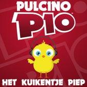 Het Kuikentje Piep by Pulcino Pio