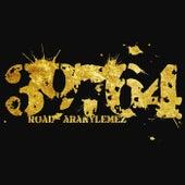 Aranylemez by Road