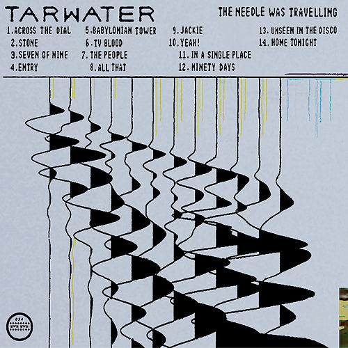 The Needle Was Traveling by Tarwater