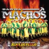 Alma De Fuego by Banda Machos