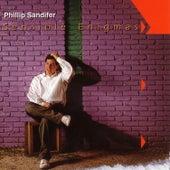 Sensible Enigmas by Phillip Sandifer