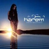 Harem by Sarah Brightman