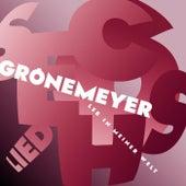Lied 6 - Leb In Meiner Welt von Herbert Grönemeyer