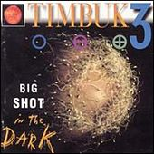 Big Shot In The Dark von Timbuk 3