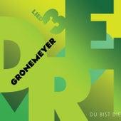Lied 3 - Du Bist Die von Herbert Grönemeyer