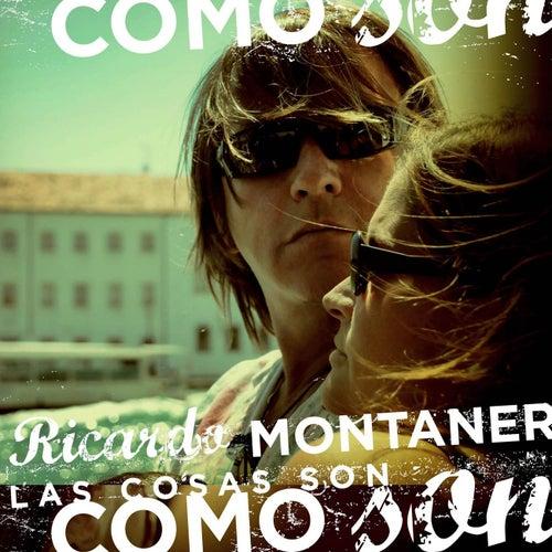Las Cosas Son Como Son by Ricardo Montaner