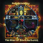 The Hour Of Bewilderbeast de Badly Drawn Boy