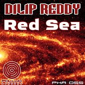 Red Sea by Dilip Reddy