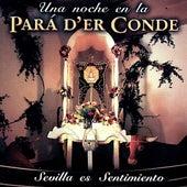Una Noche en la Pará d´er Conde - Sevilla es Sentimiento van Various Artists