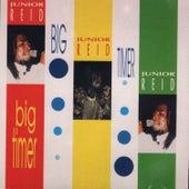 Big Timer by Junior Reid