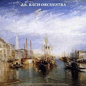 Bach: Air On the G String & Violin Concerto - Pachelbel: Canon in D - Vivaldi: the Four Seasons - Albinoni: Adagio - Beethoven: Moonlight Sonata - Liszt: Love Dream & La Campanella - Mozart: Turkish March by Various Artists