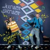 Hey Hey My My Yo Yo by Junior Senior