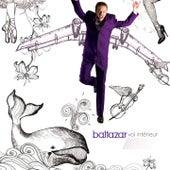 Vol intérieur de Baltazar