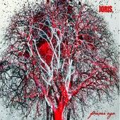 Forever Ago by Joris