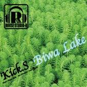 Biwa Lake - EP by The Kicks