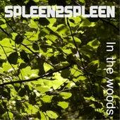 In the Woods by Spleen2spleen