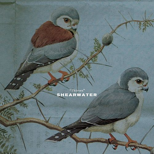 Thieves by Shearwater