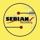 2 Years of Sebian Recordings by Various Artists