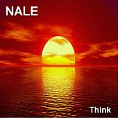 Think (The Chillout Lounge Edition) by Nale