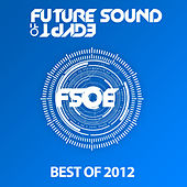 Future Sound Of Egypt - Best Of 2012 by Various Artists