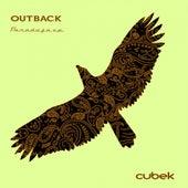 Paradoja - Single by Outback