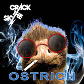Ostrich by Crack The Sky