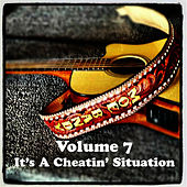 Volume 7 - It's A Cheatin' Situation by Moe Bandy