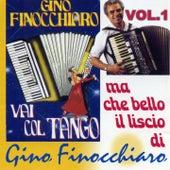 Vai col Tango, vol. 1 (Ma che bello il liscio) by Gino Finocchiaro