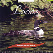 Loons de Sounds Of The Earth