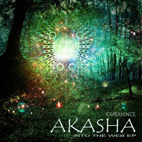 Into the Web EP by Akasha