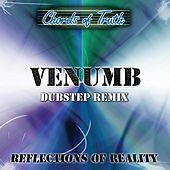 Reflections of Reality (Venumb Dubstep Remix) by Chords of Truth