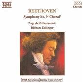 Beethoven: Symphony No. 9 de Gabriele Lechner