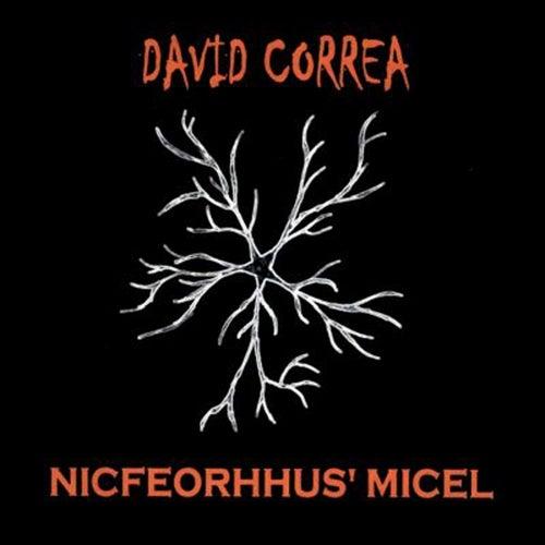 Nicfeorhhus' Micel by David Correa