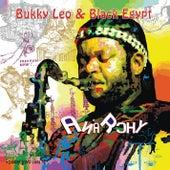 Anarchy de Bukky Leo