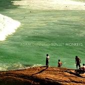 Sunset Monkeys by Adam Dunning