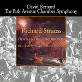 Strauss: Death and Transfiguration - Till Eulenspiegel's Merry Pranks von Park Avenue Chamber Symphony