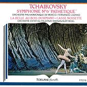 Tchaïkovsky: Symphonie No. 6 en si mineur, Pathétique, Op.74; La belle au bois dormant, Op. 66; Casse-Noisette, Op.71 de The Music Of Life Orchestra