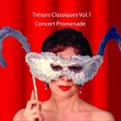 Trésors Classiques, Vol. 1 de The Music Of Life Orchestra