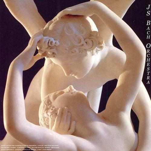 Bach: Air On the G String & Violin Concerto - Vivaldi: the Four Seasons - Pachelbel: Canon - Albinoni: Adagio - Walter Rinaldi: Piano Concerto - Granados: Danza Espanola - Sinding: Rustle of Spring - Liszt: Love Dream by Various Artists