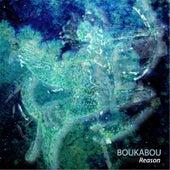 Reason by Boukabou