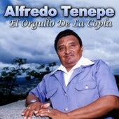 El Orgullo De La Copla de Luis Silva