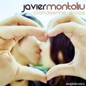Clandestine Drops by Javier Montoliu