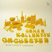 Guaranteed Niceness by Sonar Kollektiv Orchester