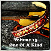 Volume 15 - One Of A Kind de Moe Bandy