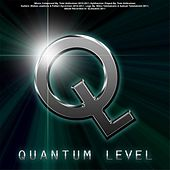 Quantum Level by Quantum Level