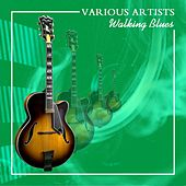 Walking Blues by Various Artists