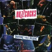 Driving You Insane de Buzzcocks