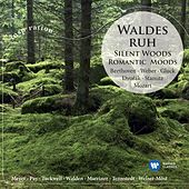 Waldesruh / Silent Woods: Romantic Moods de Various Artists
