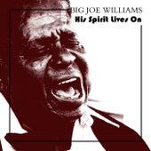 His Spirit Lives On de Big Joe Williams