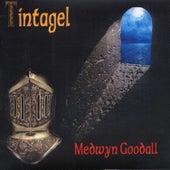 Tintagel by Medwyn Goodall